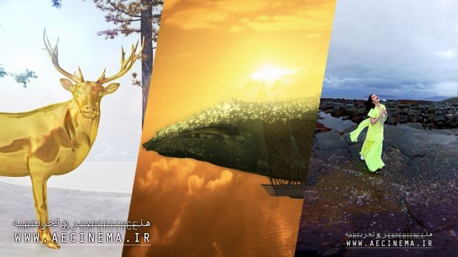 Sundance Gets Virtual with New Frontier Lineup