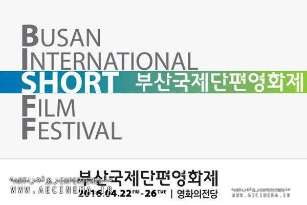 "South Korean Filmfest. to screen ""Struggle"""