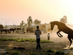 """The US Mammoth Lakes Film Festival to screen """"Atlan"""""""
