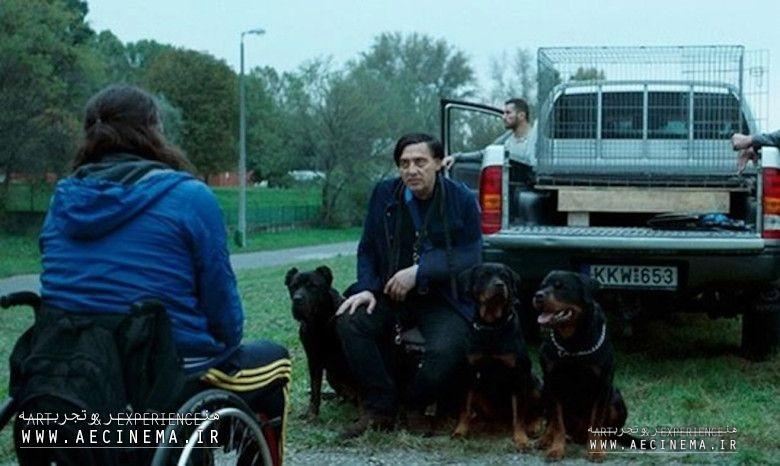 'Kills On Wheels' Exclusive Trailer: Hungarian Comedy About Disabled Gang From 'Son of Saul' Producers