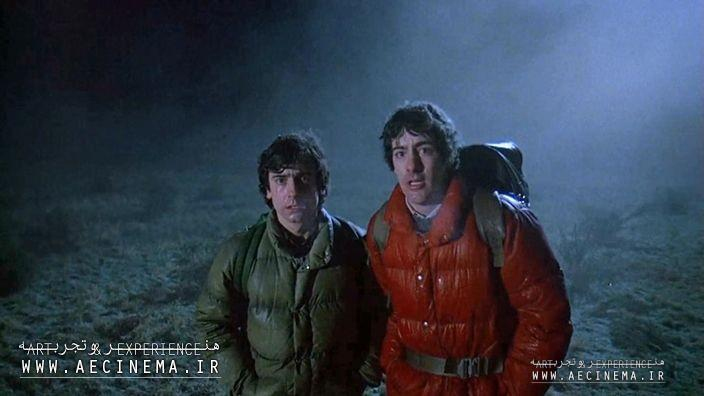 'American Werewolf in London' Remake in the Works With Max Landis and 'Walking Dead' Producers