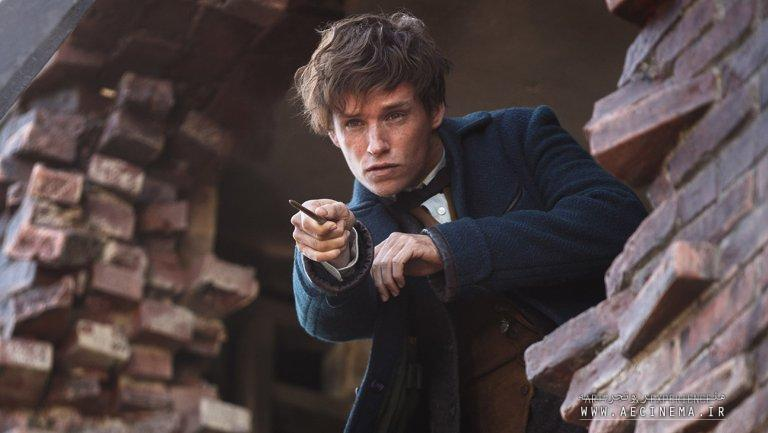David Yates Says He's Directing All Five 'Fantastic Beasts' Films