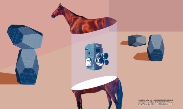 How a Kooky Photographer, the Founder of Stanford, and a Horse Accidentally Invented Filmmaking