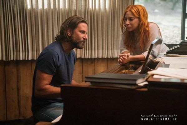 Check out the Nominations for the 2019 Golden Globe Awards