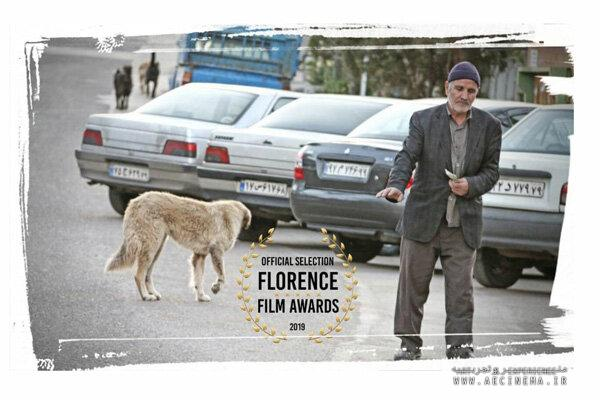 'It Rains for You' goes to Florence Film Awards in Italy