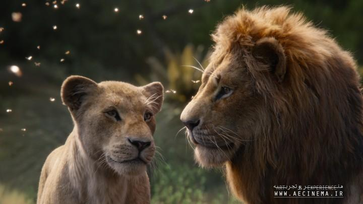 'Lion King' VFX Company Has Closed – Here's Why