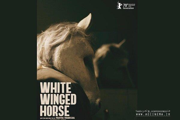 'White Winged Horse' to vie at Berlinale's Generation