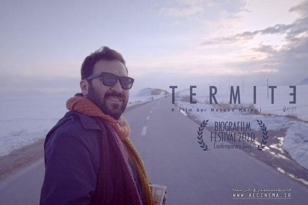 'Termites' to be screened at Italian film festival