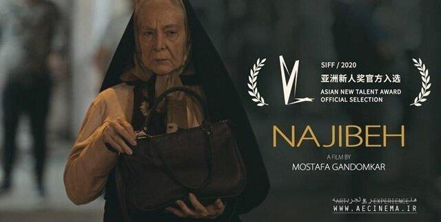 "Iranian director sees Shanghai fest chance to promote his debut film ""Najibeh"""