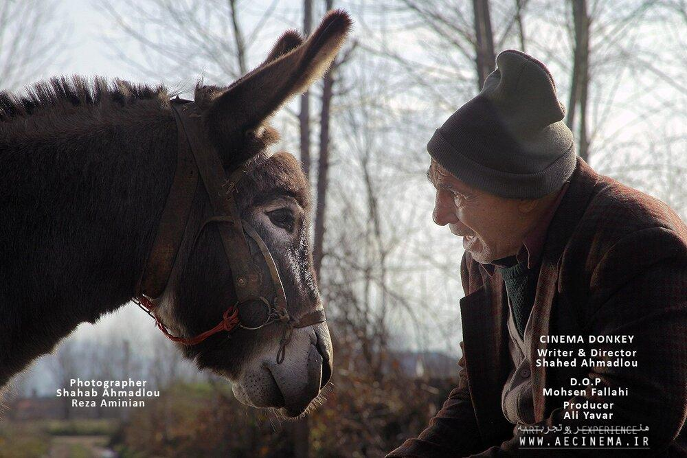 """Cinema Donkey"" crowned best at Spanish comedy film festival"