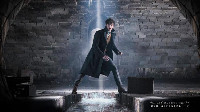 Warner Bros. Suspends 'Fantastic Beasts 3' Shoot After Crew Member Tests Positive For COVID-19