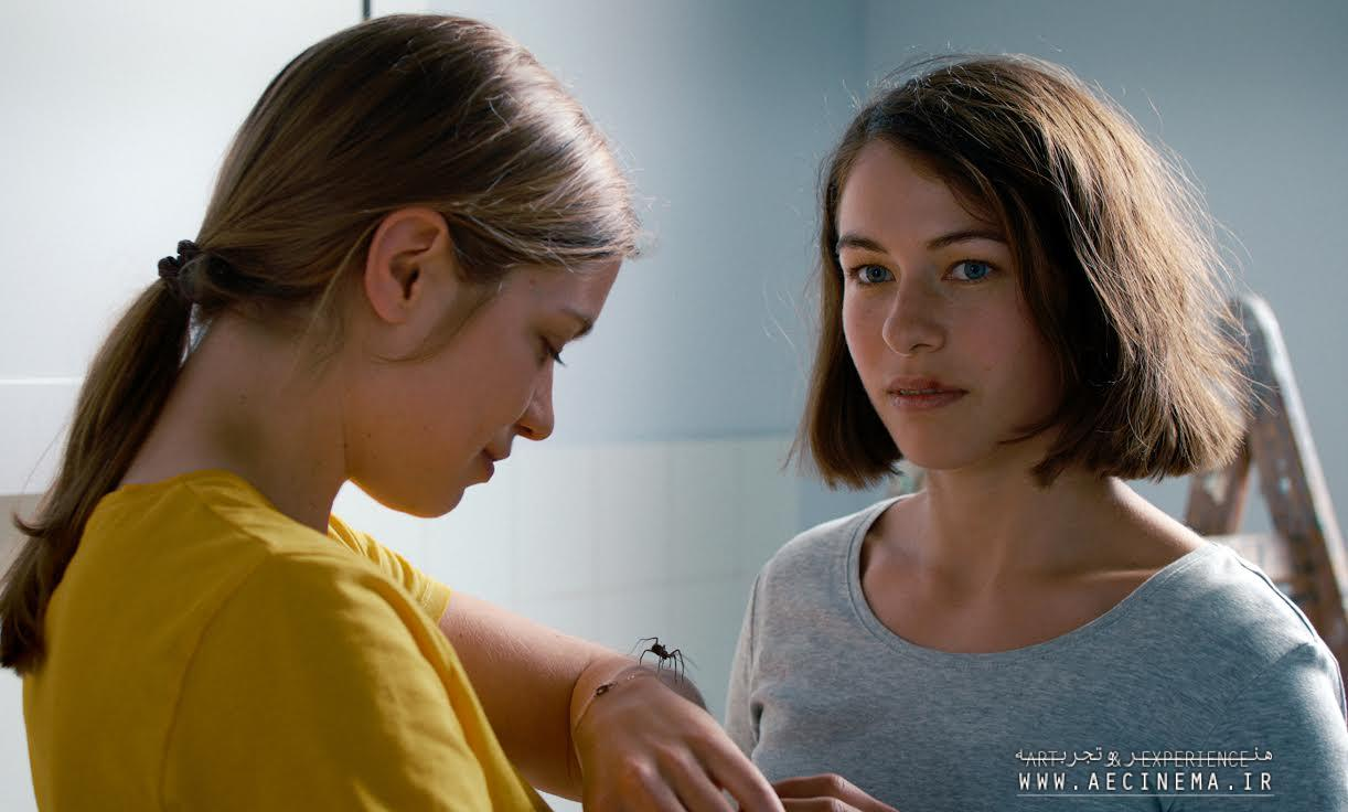 Berlin Prizewinner 'The Girl and the Spider' Finds U.S. Distribution With Cinema Guild