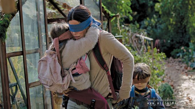 Netflix Hit 'Bird Box' to Get Spanish Movie Spin Off