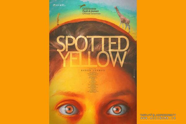 'Spotted Yellow' to go on screen at Palm Springs FilmFest.