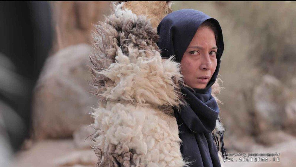 Iranian movies win awards at Light to the World Intl. Youth Film Festival