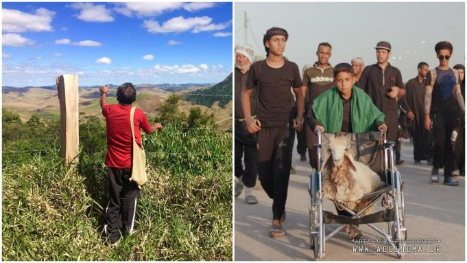'This Land is Our Land,' 'Ali and His Miracle Sheep' Win Sheffield Doc/Fest Awards